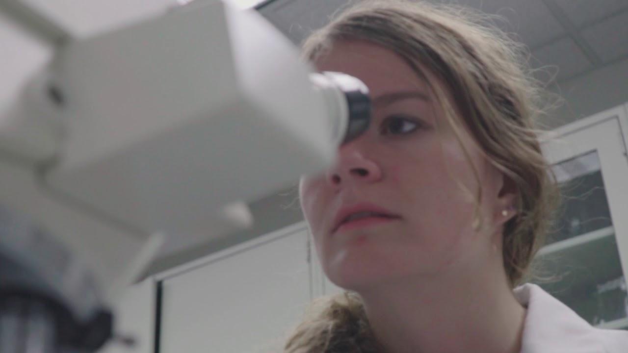 Aerosols: 2018 Reel Science Challenge