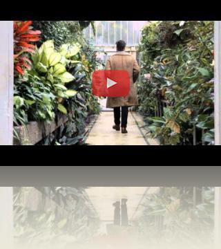 The Avant Gardeners